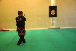 Stage Pencak Silat - Seni Gayung Fatani - 22012017 - Session n°1 (15)