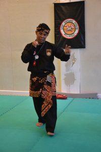 Stage Pencak Silat - Seni Gayung Fatani - 22012017 - Session n°1 (24)