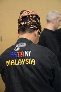 Stage Pencak Silat - Seni Gayung Fatani - 22012017 - Session n°1 (6)