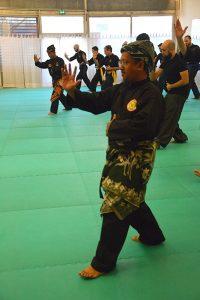 Stage Pencak Silat - Seni Gayung Fatani - 22012017 - Session n°1 (9)