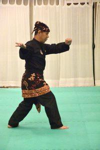 Stage Pencak Silat - Seni Gayung Fatani - 23012017 - Session n°3 (11)