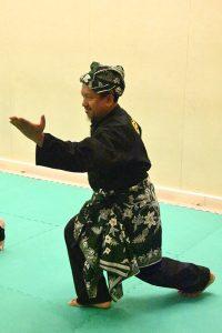 Stage Pencak Silat - Seni Gayung Fatani - 23012017 - Session n°3 (3)