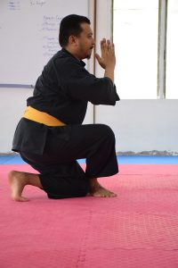 Stage Silat 2017 - Emil (2)