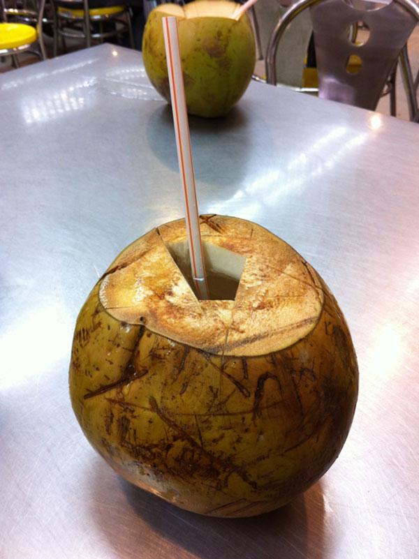 Carnet de stage Silat Fatani 2013 - Noix de coco fraiche